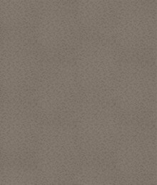 Taupe 433214